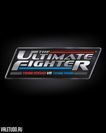 the ultimate fighter 19